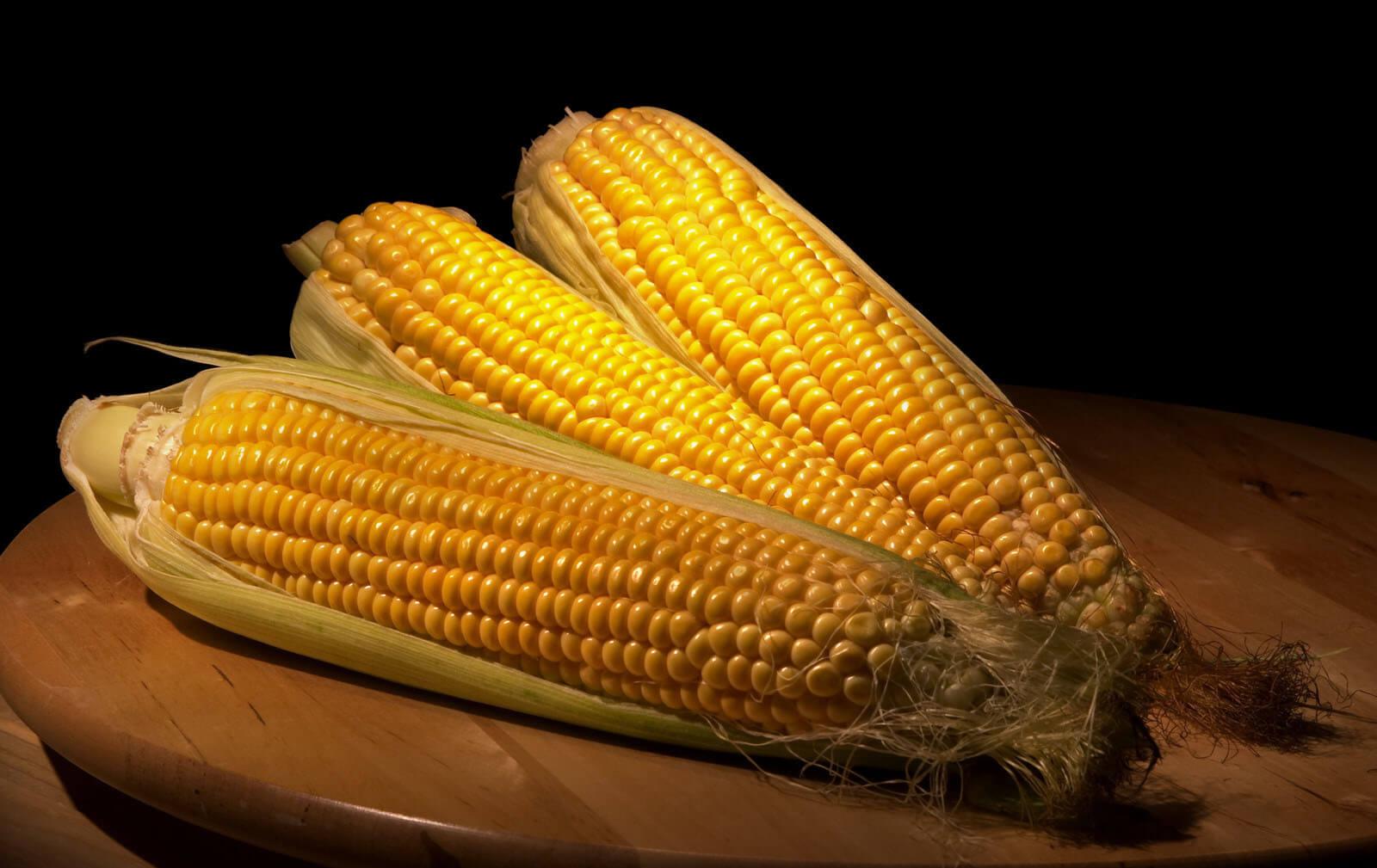 Grain House Corn Week