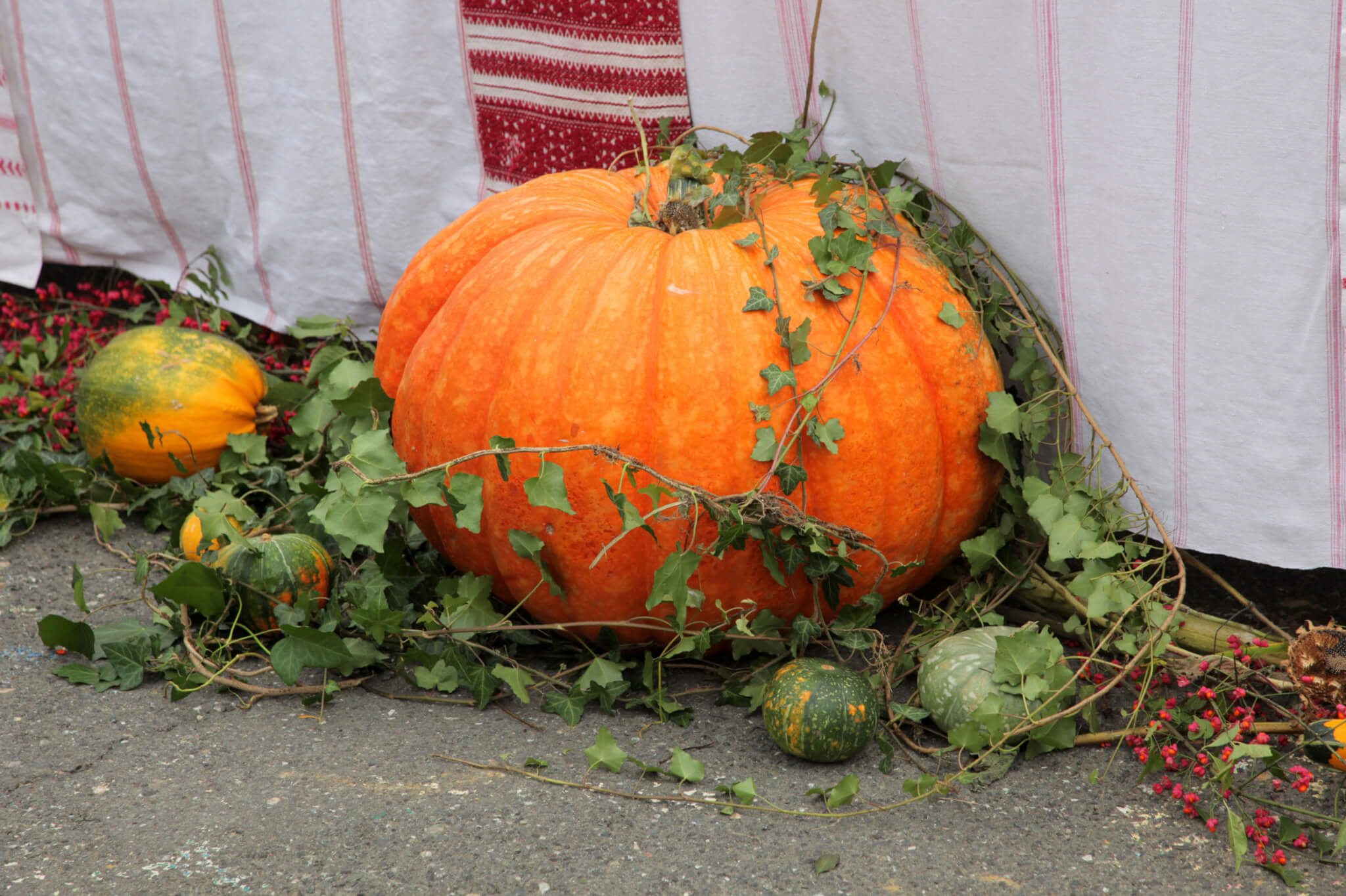 Grain House Pumpkin Week